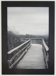Black and White Everglades Painting